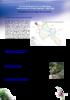 """Contrats de Restauration et d'Entretien """"Sèvre nantaise rivières vivantes"""" 2001-2005 : Enseignements de cinq années de travaux - application/pdf"""