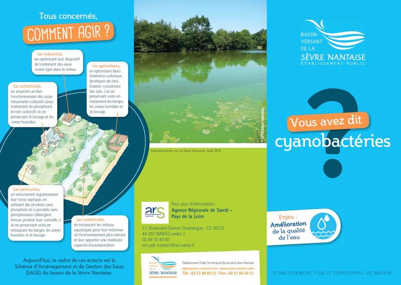 Les cyanobactéries : des organismes qui prolifèrent - application/pdf