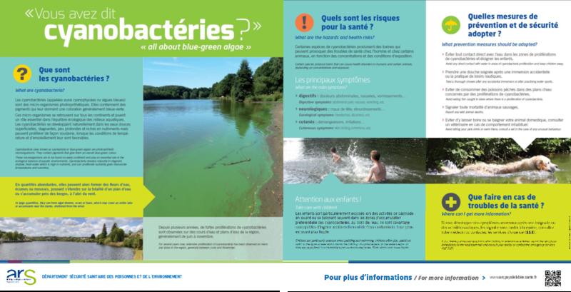 """""""Vous avez dit cyanobactéries ?"""" - application/pdf"""
