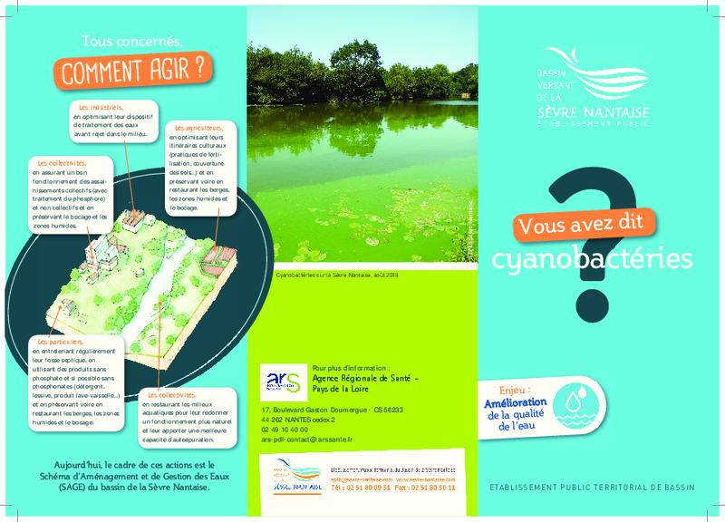 Vous avez dit cyanobacteries ? - application/pdf