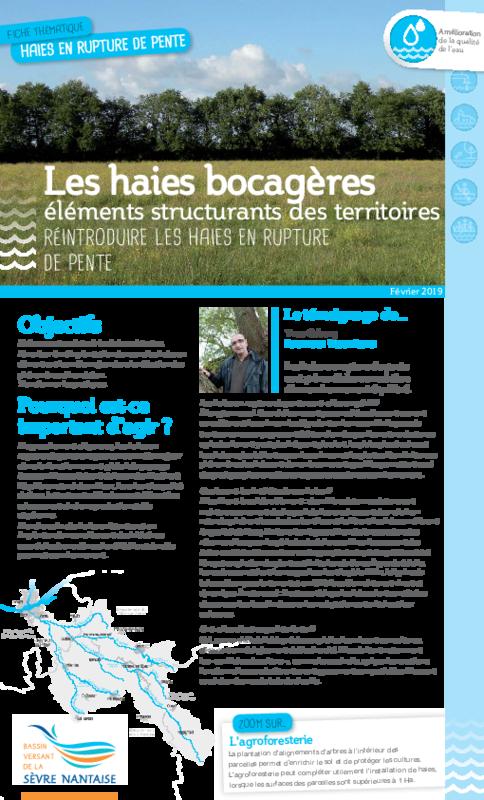 Les haies bocagères éléments structurants des territoires - Réintroduire les haies en rupture de pente - application/pdf